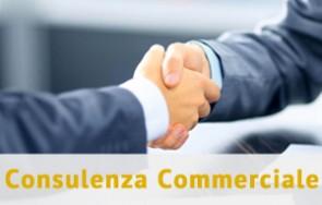 Consulenza Commerciale